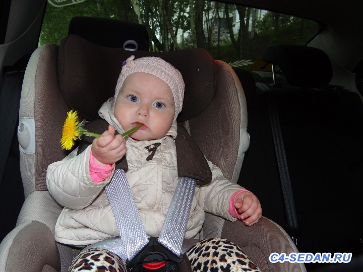 Наши детки в наших авто - DSC07967.JPG
