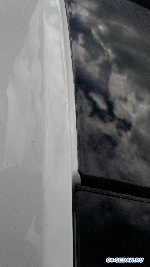 Black Pack Качество окраски крыши. - IMG_20180608_161826.jpg