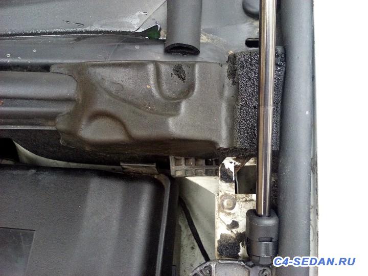 Клубная закупка газовых упоров AEngineering для капота - DSC_0086.JPG