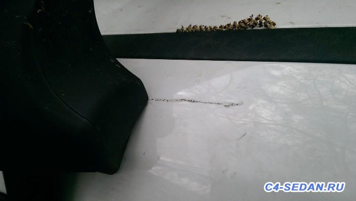Багажник Рэйлинги на крышу Штатный и не только  - IMAG5418.jpg